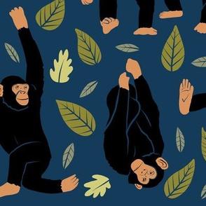 Large Scale Chimpanzees on Dark Blue