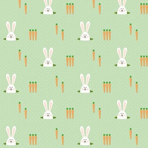 carrots for the bunny