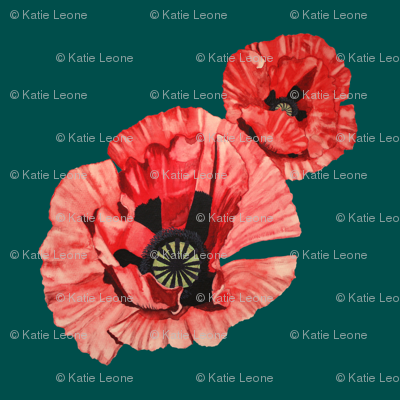 Watercolor Summer Poppy on Teal