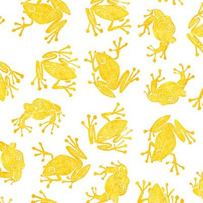 golden frogs on white