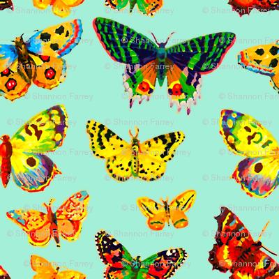 butterfly moths rainbow