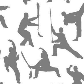 Shaolin Kung Fu // Grey
