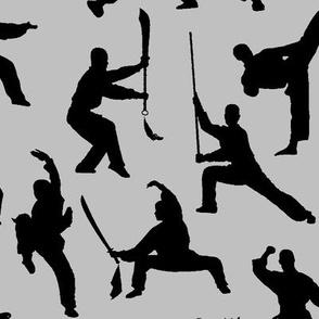 Shaolin Kung Fu // Silver