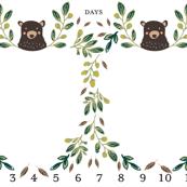 Twins Milestone blanket for boys Twins growth blanket Twin monthly blanket kookinuts bear