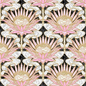 Blush King Protea Art Deco (black)