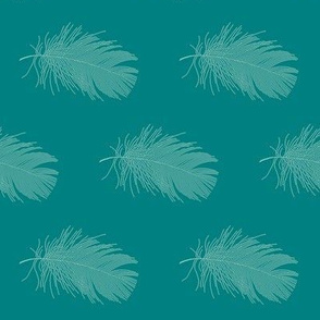 aqua feather on teal