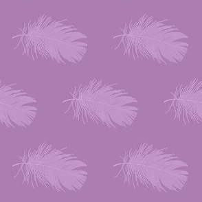 lilac feather on lavender