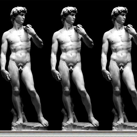 2 uncensored Michelangelo David statue Renaissance baroque rococo marble Italy Italian man human black white monochrome standing nude naked nudity genitalia penis scrotum   fabric by raveneve on Spoonflower - custom fabric