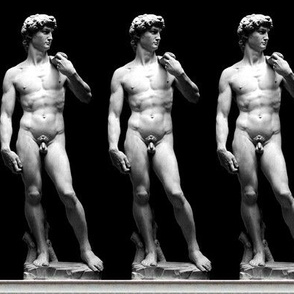 2 uncensored Michelangelo David statue Renaissance baroque rococo marble Italy Italian man human black white monochrome standing nude naked nudity genitalia penis scrotum