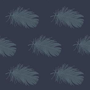 slate feather on navy blue