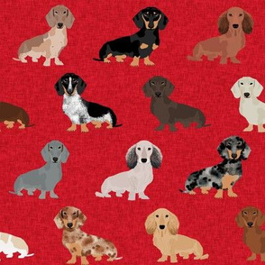dachshund pet quilt a dog breed silhouette cheater quilt multi coats
