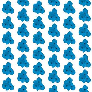 Bermuda flower blue colors