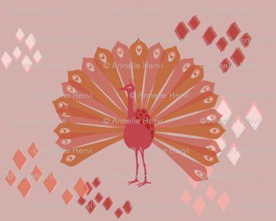 Pink pop peacock