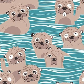 Otters dazzling the audience // teal background