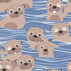 Otters dazzling the audience // blue background