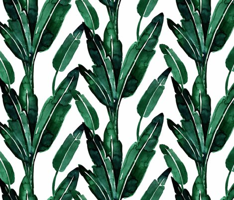 Rrbanana-leaves_shop_preview