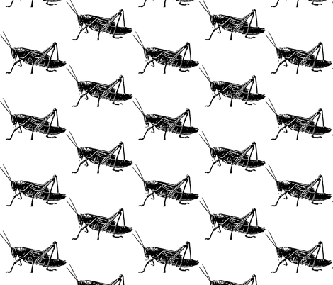 Grasshoppers by Kim Rossiter fabric by kimrossiter on Spoonflower - custom fabric
