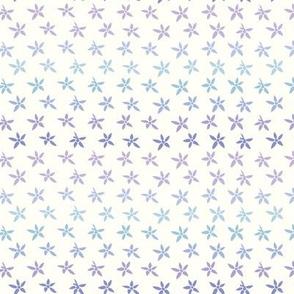 Milkweed Stars