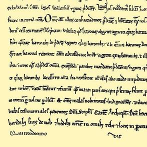 Magna Carta // Parchment