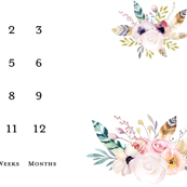 Boho Milestone Blanket Flowers and feathers