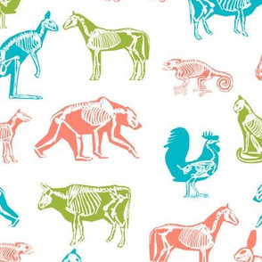 xray // animal skeletons cute nature themed fabric gender neutral animals white bright