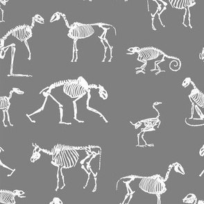 xray // animal skeletons cute nature themed fabric gender neutral animals grey