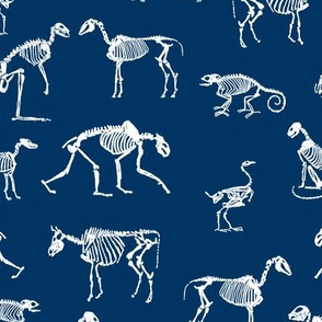 xray // animal skeletons cute nature themed fabric gender neutral animals navy