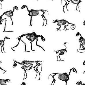 xray // animal skeletons cute nature themed fabric gender neutral animals black and white