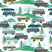 wagoneer fabric raindrops