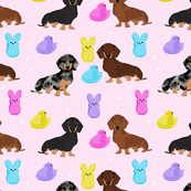 dachshund dog breed easter spring marshmallow sweet treats fabric purple