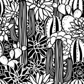 CactusFabric-01