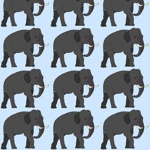 Elephant walking baby blue