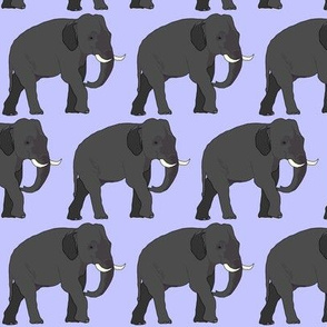 Elephant on Purple 1