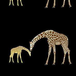 Mom and baby giraffe in black