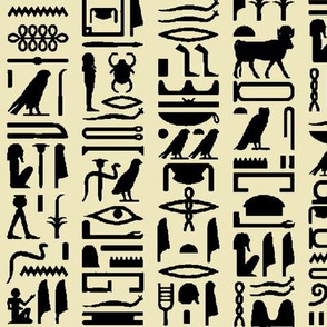 Egyptian Hieroglyphics on Parchment // Large