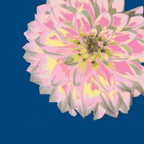 Dahlia More Pink Yellow on Naval background expanded border