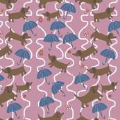 puppies and umbrellas