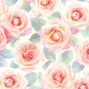 Medium Faded Pink and Peach Painted Roses