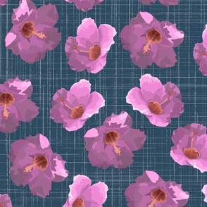 Hibiscus Spring CROcus BLue