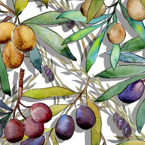 PROVENCE OLIVES WATERCOLOR WHITE
