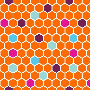 18-7AG Hexie Orange Hexagon Light Blue Purple Pink _ Miss Chiff Designs
