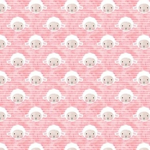 "3/4"" little lamb - pink - C18BS"