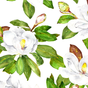 Magnolia Flowers, Bright White, Large Floral Print