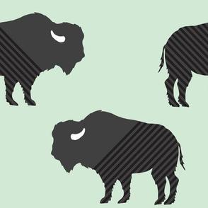 Buffalo Stripes on Mint