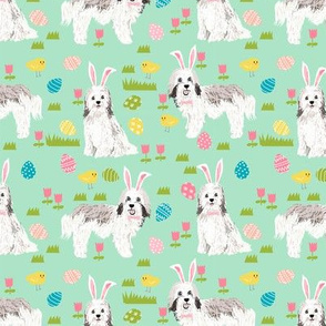 havanese easter dog breed fabric spring easter bunny pure bred mint