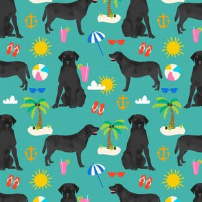 Black Lab labrador retriever beach summer dog breed fabric teal