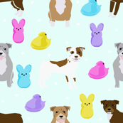 Pitbull Easter candy design - cute pastel easter spring design with dogs - light mint