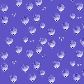 hot-air balloons small