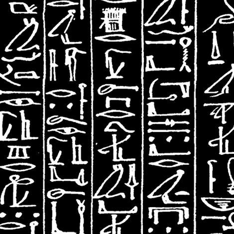 Papyrus on Ani // Black // Large fabric by thinlinetextiles on Spoonflower - custom fabric