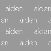 Personalized Baby Name Fabric - Aiden